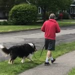 Man walking dog on leash